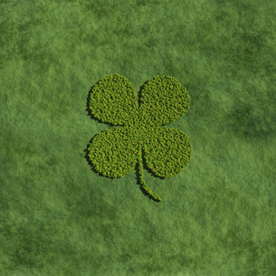 Four leaf clover create by tree with grass backgroundの写真素材 [FYI00643130]