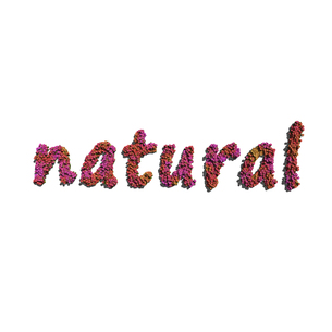 natural create by red color flowers white backgroundの写真素材 [FYI00643176]