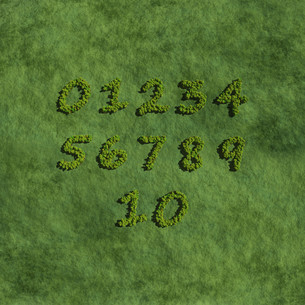 numbers create by tree with grass background.jpgの写真素材 [FYI00643178]