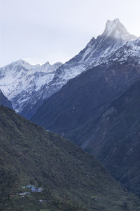 Fish Tail or Mt.Machhapuchhare in Nepalの写真素材 [FYI00643342]