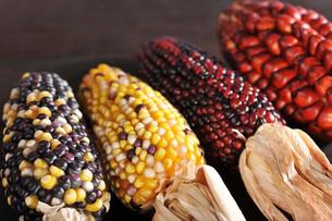 various corn cobsの写真素材 [FYI00643644]