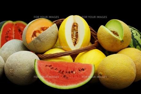 melonsの素材 [FYI00643826]