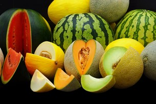 melonsの素材 [FYI00643829]