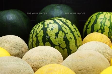 melonsの素材 [FYI00643831]