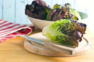 red lettuceの写真素材 [FYI00644019]