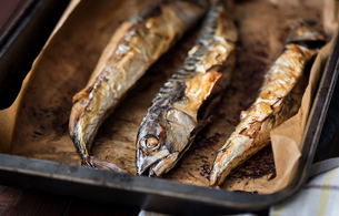 Baked Fish on a Roaster Panの写真素材 [FYI00644199]