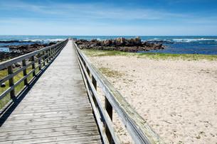 Beachの写真素材 [FYI00644346]
