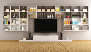Modern lounge with bookcase and televisionの写真素材 [FYI00644355]