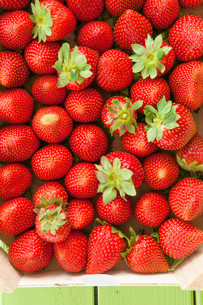 fresh ripe strawberriesの写真素材 [FYI00644383]