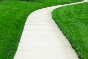 Pathway through green lawnの写真素材 [FYI00644679]