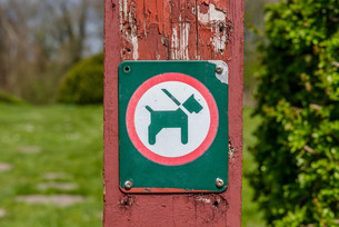 Sign with a dog in a leashの写真素材 [FYI00645032]