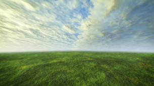 3D cloud and grass with green conceptの写真素材 [FYI00645308]