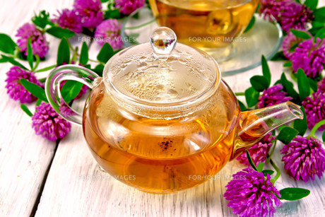 Tea with clover in glass teapot on light boardの写真素材 [FYI00645485]