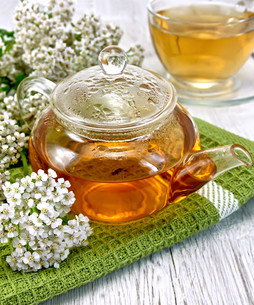 Tea with yarrow in glass teapot on boardの写真素材 [FYI00645518]