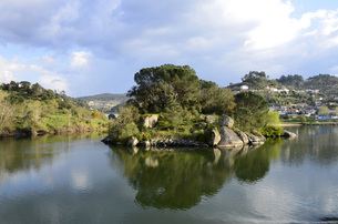 river landscape on douro between regua and entre-os-riosの写真素材 [FYI00645624]