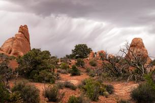 Rain Streaks Clouds Rock Formations Utah Juniper Treesの写真素材 [FYI00645676]