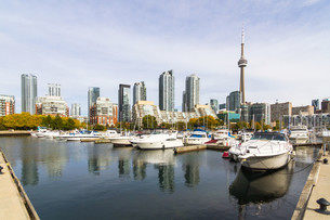 Toronto in autumn, Canadaの写真素材 [FYI00645866]