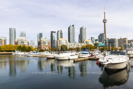 Toronto in autumn, Canadaの写真素材 [FYI00645868]