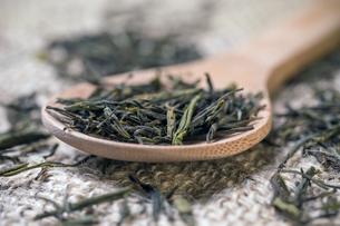 Dry green tea leavesの写真素材 [FYI00645894]