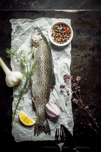 Raw Fish on Surrounded by Various Seasoningsの写真素材 [FYI00645900]