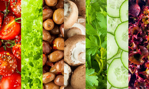 Collage of healthy fresh salad ingredientsの写真素材 [FYI00645922]