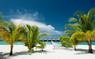 beach with overwater bungalowsの写真素材 [FYI00645994]