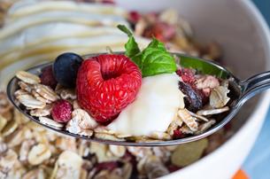 muesli with yoghurt and fruit on woodの写真素材 [FYI00646061]