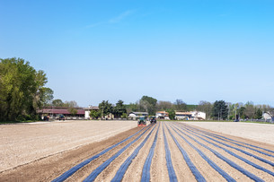 agricultureの写真素材 [FYI00646121]