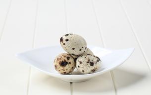 Quail eggsの写真素材 [FYI00646140]