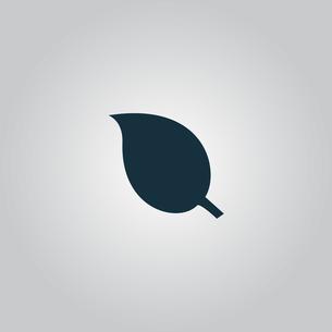 Leaf Iconの写真素材 [FYI00646606]