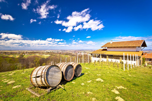 Vineyard hill landscape and wine barrelsの写真素材 [FYI00646649]