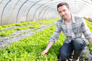 Portrait of an attractive farmer in a greenhouseの写真素材 [FYI00646796]