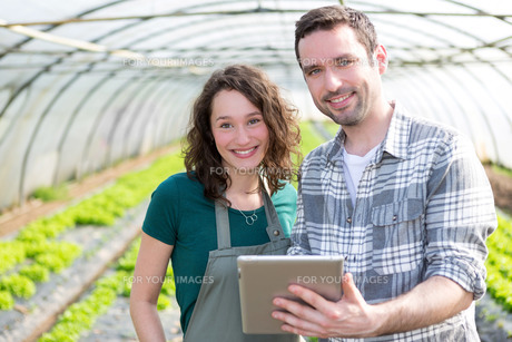 Farmers watching stats on tabletの写真素材 [FYI00646797]