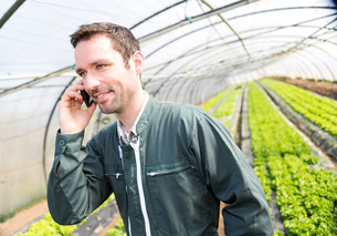 Portrait of an attractive farmer in a greenhouse using mobileの写真素材 [FYI00646823]