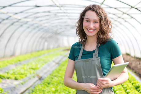 Portrait of an attractive farmer in a greenhouse using tabletの写真素材 [FYI00646920]