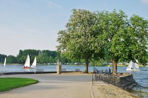 view of lake waging,upper bavariaの写真素材 [FYI00647206]
