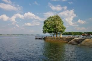 view of lake waging,upper bavariaの写真素材 [FYI00647207]