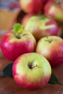 harvest of applesの写真素材 [FYI00647572]