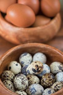 Fresh eggsの写真素材 [FYI00647579]