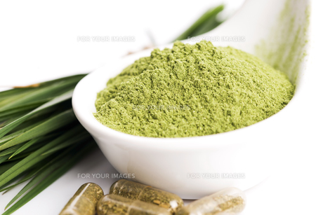Young barley grass. Detox superfood.の写真素材 [FYI00647849]