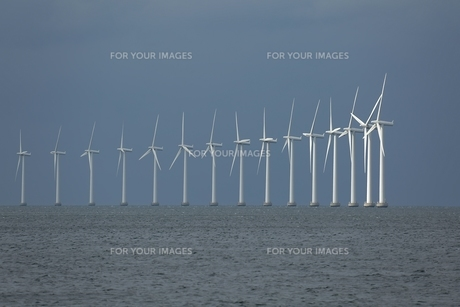 Wind tubinesの写真素材 [FYI00648017]