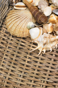 Aerial view of seashells in the old wicker basket. Vertically.の写真素材 [FYI00648622]