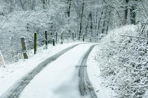 winterの写真素材 [FYI00648896]