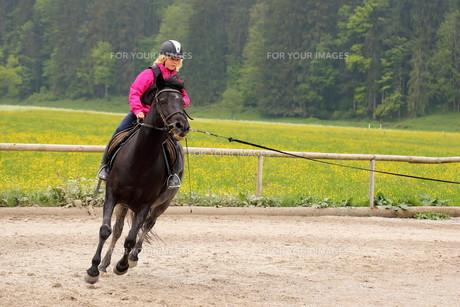 equitation_sportsの写真素材 [FYI00649227]