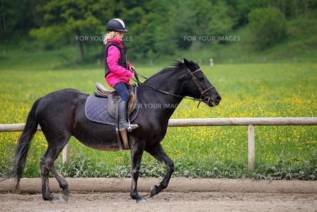 equitation_sportsの写真素材 [FYI00649228]