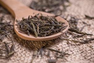 Dry green teaの写真素材 [FYI00649670]