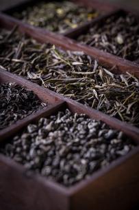 Dry tea in wooden boxの写真素材 [FYI00649677]