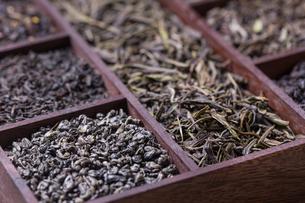 Dry tea leavesの写真素材 [FYI00649678]