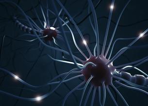 Nerve Cellの写真素材 [FYI00649716]