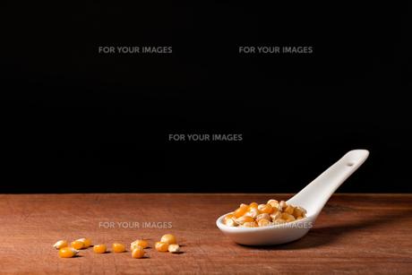 corn on the cob on porcelain spoonの写真素材 [FYI00649761]